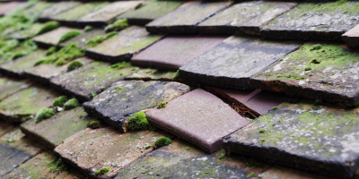 Alstonefield roof repair costs